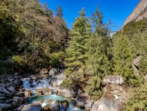 Pine forest and river in the hilly region of Nepal stock photography