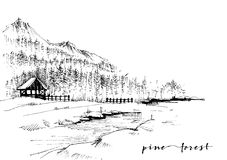 Pine forest sketch Stock Photo