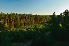 Pine forest with train track in foreground near czech village of Okna in Machuv kraj tourist area during holiday sunset in july 20 Royalty Free Stock Images