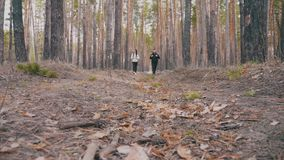Pine forests, couple lovely backpacker hikers. They are travelers, adventure lovers of nature. The study of the ecology