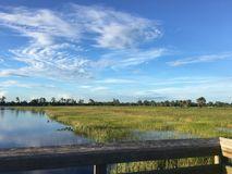 Pine Glades Natural Area in Florida Swamps. Dock over the marsh in a Florida Swamp Stock Images