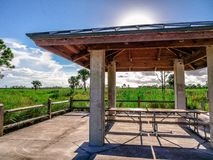 Pine Glades Natural Area in Florida Swamps. Picnic table in the Florida Everglades Royalty Free Stock Image