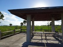 Pine Glades Natural Area in Florida Swamps. Picnic table in the Florida Everglades Stock Photo