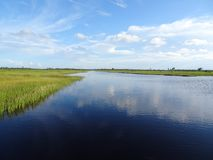 Pine Glades Natural Area in Florida Swamps. River and swamp grass in the marshes Stock Photos