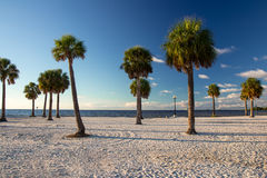 Pine Island Florida. Blue contract sky above the beach at Pine Island, Florida royalty free stock photo