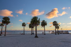Pine Island at twilight. Stock Photo