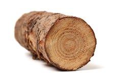 Free Pine Logs Stock Photo - 114286070