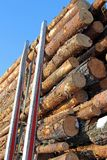 Pine Logs on Logging Trailer. A load of pine timber on a logging trailer with blue sky on the background, vertical view. Photographed in Paimio, Finland February Royalty Free Stock Photos