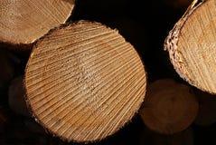 Pine Logs Stacked Macro royalty free stock photo