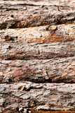 Pine logs texture Royalty Free Stock Photography
