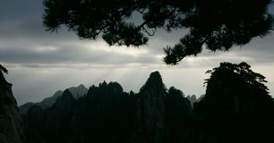 Pine mountain sunshine in huangshan Stock Photo