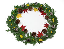 Pine needles, cones and leafs- Holiday Wreath Royalty Free Stock Photos
