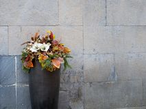 Outdoor floral arrangement, Christmas, festive. Stock Photo