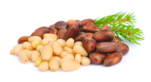 Pine nut Royalty Free Stock Photos