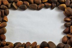 Pine nut is an edible fruit that is extracted from pine cones. Pine nut seeds of Siberian pine, are used in food purified, extracted from cones, delicious stock photography