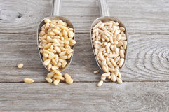 Pine nut Stock Photos