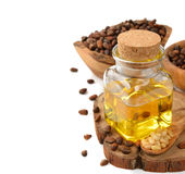 Pine nut oil Royalty Free Stock Image