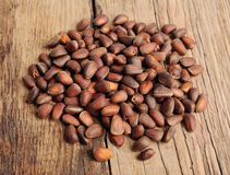Pine nut Royalty Free Stock Photography