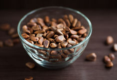 Pine nuts. Unpeeled pine nuts in the bowl Stock Images