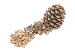 Pine nuts. Dried pineapple with pine nuts on a white background royalty free stock images