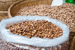 Pine nuts background Royalty Free Stock Photography