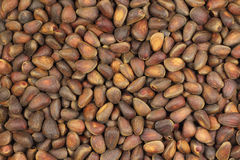 Pine nuts brown background Royalty Free Stock Images
