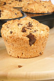 Pine nuts and chocolate muffin Royalty Free Stock Image