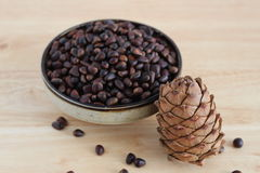 Pine nuts and cone Stock Photography