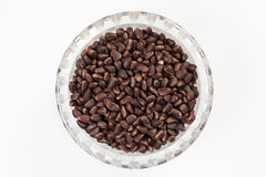 Pine nuts in a cup Stock Image