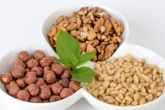 Pine nuts, hazelnut, walnuts in a bowl Note to editor:Pine nuts, hazelnut, walnuts in a bowl isolated on Royalty Free Stock Photo