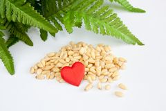 Pine nuts. Heart and green leaves still-life Royalty Free Stock Images