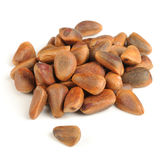 Pine Nuts Isolated on White Background Stock Photography