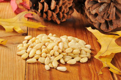 Pine nuts Stock Photos