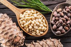 Pine nuts in the spoon and pine nut cone on the wooden table. Organic food.  stock photo