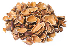 Pine nuts on the white. Pine nuts  on the white. Studio shoot Stock Images
