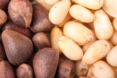 Pine nuts or whole peeled macro background Royalty Free Stock Images
