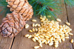 Pine nuts on wooden background Royalty Free Stock Photography