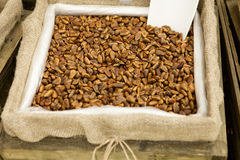 Pine nuts. In a wooden box royalty free stock photo