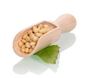 Pine nuts in a wooden scoop Stock Photos