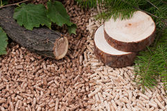 Pine and oak pellets Stock Photos