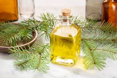 Pine essential oil for beauty or medicinal purposes royalty free stock image
