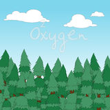 Pine oxygen Royalty Free Stock Photo