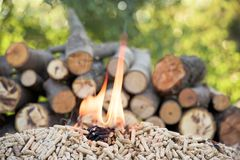 Biomass and woods. Pine pellets and file of woods in flames royalty free stock photography