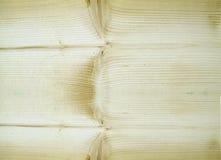 Pine plank macro Royalty Free Stock Image