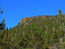 Pine Ridge Στοκ φωτογραφία με δικαίωμα ελεύθερης χρήσης