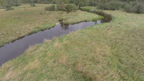 Pine River Aerial  Bends stock video