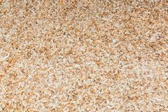 Pine sawdust made by a chainsaw in an even layer royalty free stock images