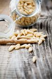 Pine seeds Stock Images