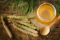 Pine syrup. Homemade syrup made from green young pine buds and sugar Royalty Free Stock Photography
