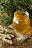 Pine syrup Royalty Free Stock Photo
